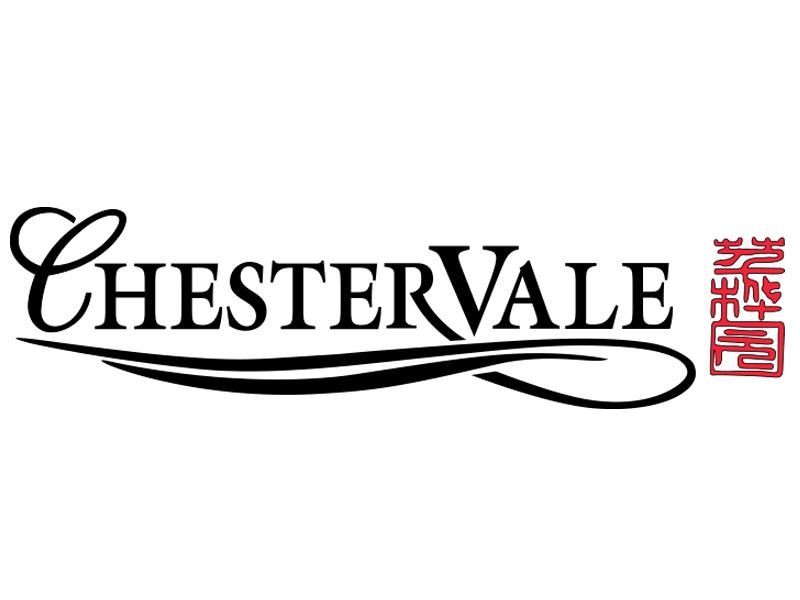 Design & Analytics dna_chestervalelogo-1 Home